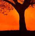 Fiery Sky by Eric Hausel