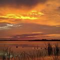 Fiery Sunset by Liza Eckardt