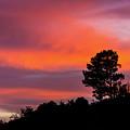 Fiery Sunset by Subhadra Burugula