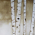 Fifteen Birch Trees by Cheryl Rose
