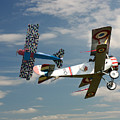 Fighting Colours 2 - Fokker D. Vll - Nieuport by Pat Speirs
