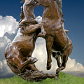 Fighting Stallions by Rich Stedman