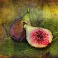 Figs by Sari Sauls