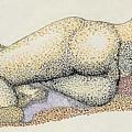 Figure2.5 by M Brandl