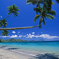Fiji, Kadavu Island by Ron Dahlquist - Printscapes