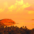 Fiji Mana Island by Dave Fleetham - Printscapes