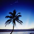 Fiji Sunset by Rita Ariyoshi - Printscapes