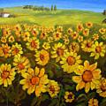 Filed Of Sunflowers by Mary Jo Zorad
