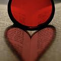 Filter Heart 2 by Matthew Fox