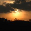 Fine Art - Sunset 4 by Jenny Potter