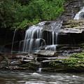 Fine Falls by Shari Jardina