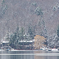 Finger Lakes Winter Panorama by Michele Steffey