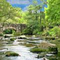 Fingle Bridge - P4a16007 by Dean Wittle