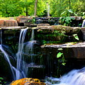 Finlay Park Waterfall Summertime by Lisa Wooten