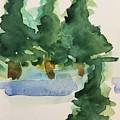 Fir Trees by Britta Zehm