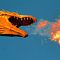 Fire Breathing Dragon Pano Work by David Lee Thompson