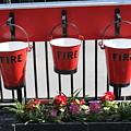 Fire Buckets by Lauri Novak