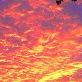 Fire Clouds by Honey Behrens