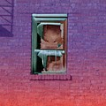Fire Escape Window 2 by Tim Allen