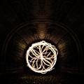 Fire Flower Tunnel by Pelo Blanco Photo