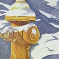 Fire Hydrant by Sandra McClelland