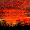 Fire In The Sky by Aron Chervin