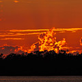 Fire In The Sky by Marilee Noland