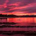 Fire In The Sky by Racheal Christian