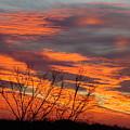 Fire Sunrise by Ana Villaronga