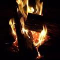 Fire by Zoe Ward