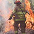 Firefighter 967 by Francesa Miller