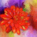 Fireflower by Judi Bagwell