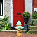 Fireplug In Frederick Maryland by James Brunker