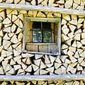 Firewood by Frank Tschakert