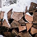 Firewood  by Robert J Caputo