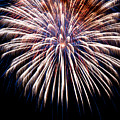 Firework Beauty by Colleen Coccia