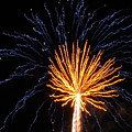 Firework Blue And Gold by Adrienne Wilson