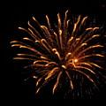Firework Golden Lights by Adrienne Wilson