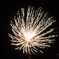 Firework White Fluff by Adrienne Wilson