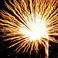 Firework Yellow Burst by Adrienne Wilson