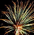 Firework Yellow Tip by Adrienne Wilson