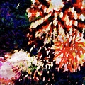 Fireworks 2 by Joan Reese