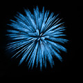 Fireworks Abstract 0841-2 by Tam Ryan