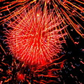 Fireworks Abstraction 2 by Beth Akerman