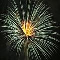 Fireworks Green Flower  by Steven Natanson
