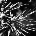 Fireworks In Black And White 4 by Kelly Hazel