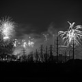 Fireworks In Black And White by Imagery by Charly