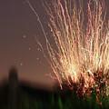 Fireworks by JP Morris