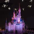 Fireworks Over Cinderella's Castle by Chris Bordeleau