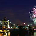 Fireworks by Tracy Reese